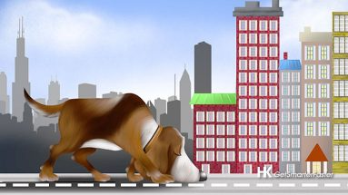 Sniff Out Buying Downtown Chicago Condos